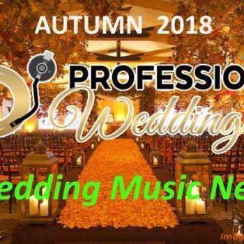 Team ProfessionalWeddingDJ, Autore a Wedding DJ for Wedding in Italy ...